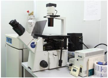眼科干细胞临床应用研究中心